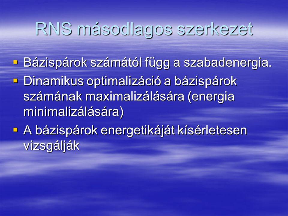 RNS másodlagos szerkezet  Bázispárok számától függ a szabadenergia.
