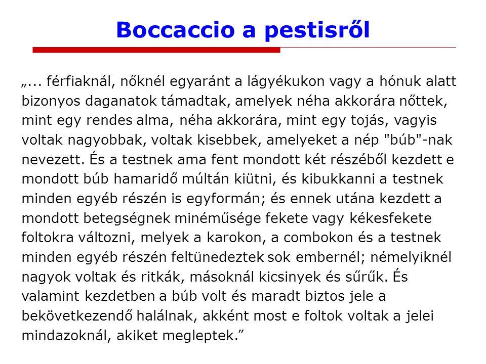 """Boccaccio a pestisről """"... férfiaknál, nőknél egyaránt a lágyékukon vagy a hónuk alatt bizonyos daganatok támadtak, amelyek néha akkorára nőttek, mint"""