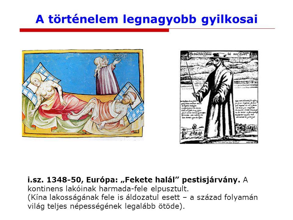 """A történelem legnagyobb gyilkosai i.sz. 1348-50, Európa: """"Fekete halál"""" pestisjárvány. A kontinens lakóinak harmada-fele elpusztult. (Kína lakosságána"""
