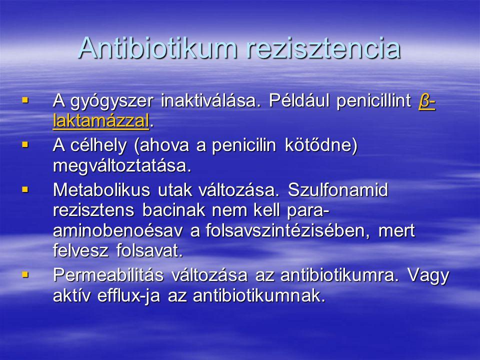 Antibiotikum rezisztencia  A gyógyszer inaktiválása.