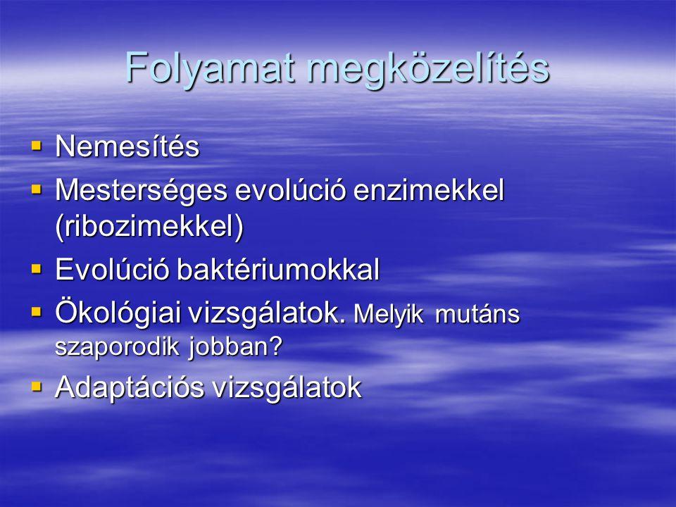 Folyamat megközelítés  Nemesítés  Mesterséges evolúció enzimekkel (ribozimekkel)  Evolúció baktériumokkal  Ökológiai vizsgálatok.