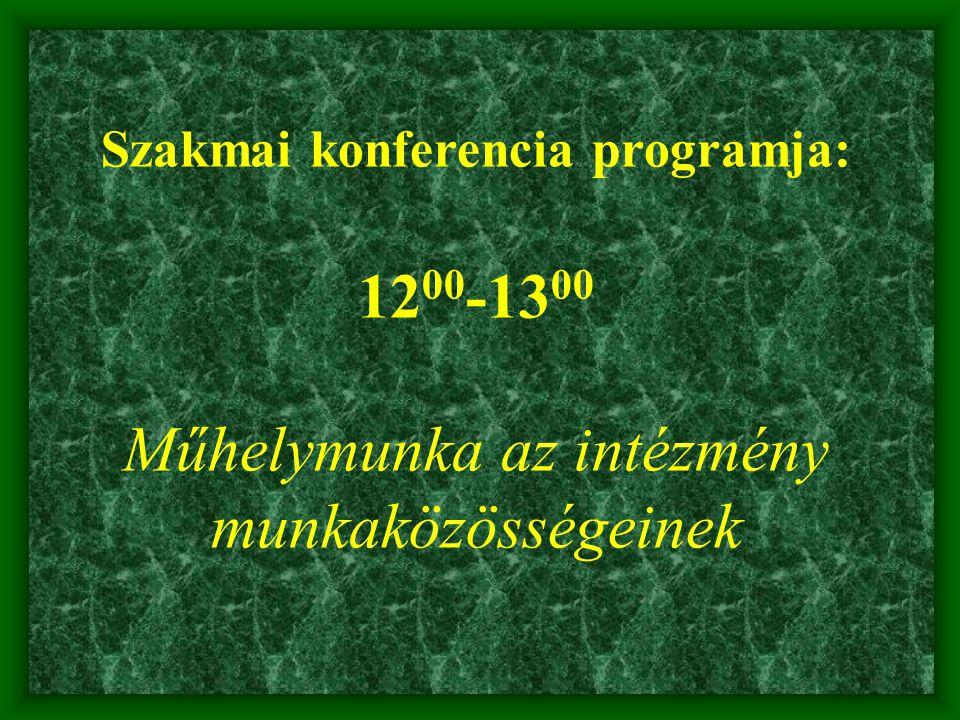 Szakmai konferencia programja: 12 00 -13 00 Műhelymunka az intézmény munkaközösségeinek