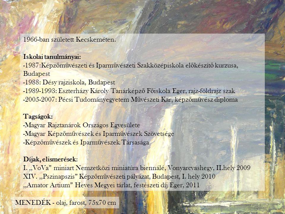 1966-ban született Kecskeméten. Iskolai tanulmányai: -1987:Képz ő m ű vészeti és Iparm ű vészeti Szakközépiskola el ő készít ő kurzusa, Budapest -1988