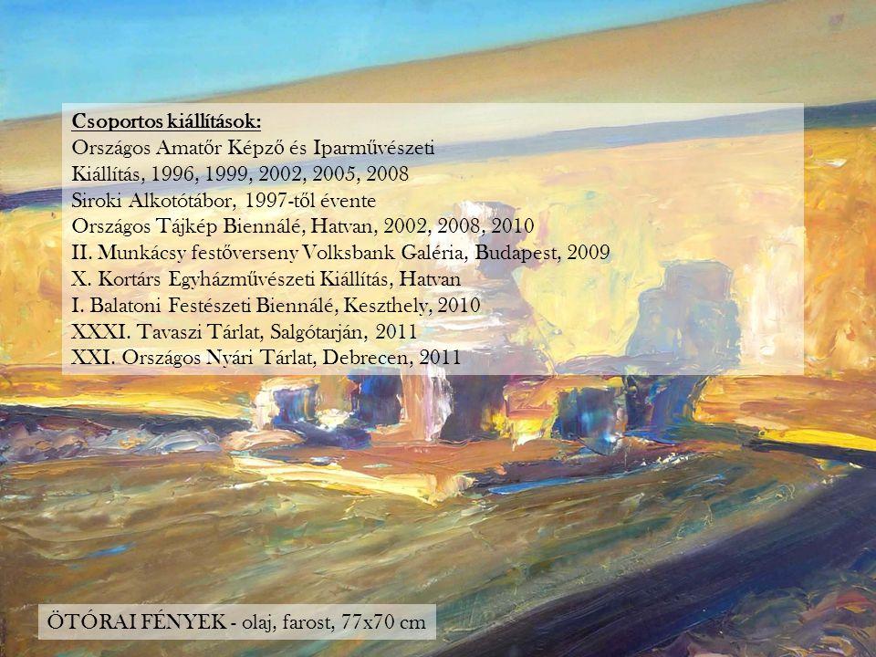 Csoportos kiállítások: Országos Amat ő r Képz ő és Iparm ű vészeti Kiállítás, 1996, 1999, 2002, 2005, 2008 Siroki Alkotótábor, 1997-t ő l évente Orszá