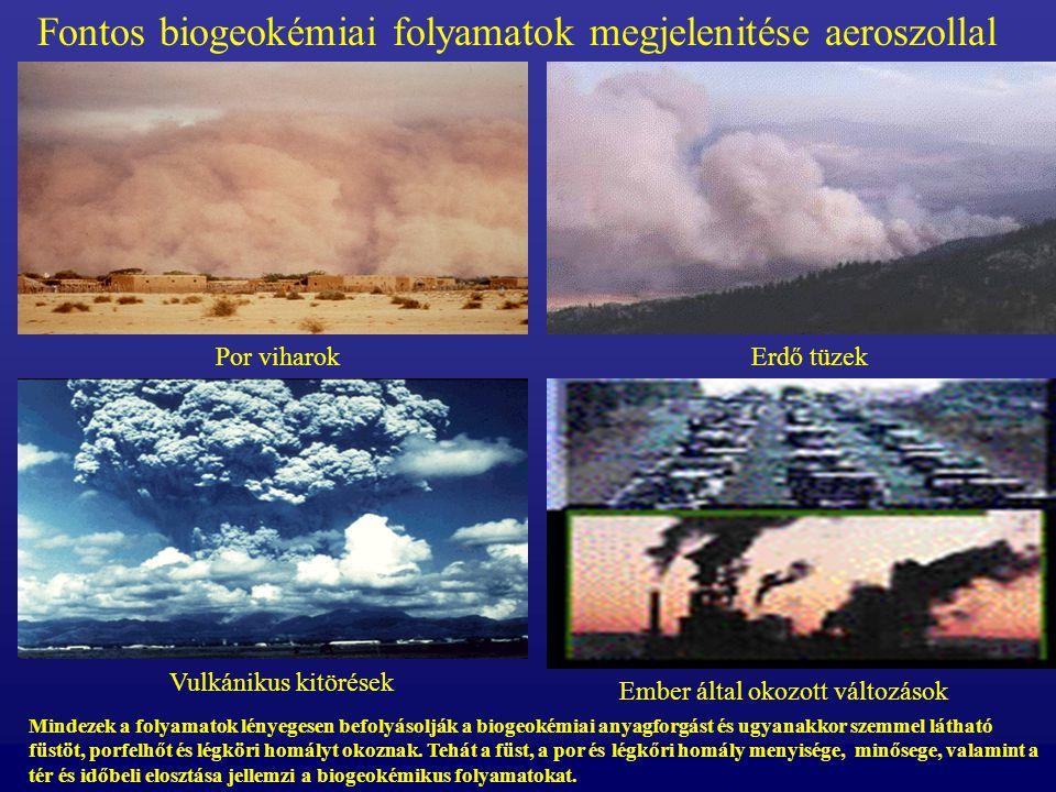 Fontos biogeokémiai folyamatok megjelenitése aeroszollal Vulkánikus kitörések Por viharokErdő tüzek Ember által okozott változások Mindezek a folyamatok lényegesen befolyásolják a biogeokémiai anyagforgást és ugyanakkor szemmel látható füstöt, porfelhőt és légköri homályt okoznak.