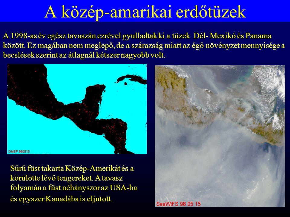 A közép-amarikai erdőtüzek A 1998-as év egész tavaszán ezrével gyulladtak ki a tüzek Dél- Mexikó és Panama között.