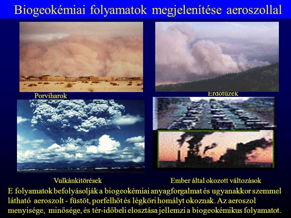 Biogeokémiai folyamatok megjelenítése aeroszollal Vulkánkitörések Porviharok Erdőtüzek Ember által okozott változások E folyamatok befolyásolják a biogeokémiai anyagforgalmat és ugyanakkor szemmel látható aeroszolt - füstöt, porfelhőt és légköri homályt okoznak.