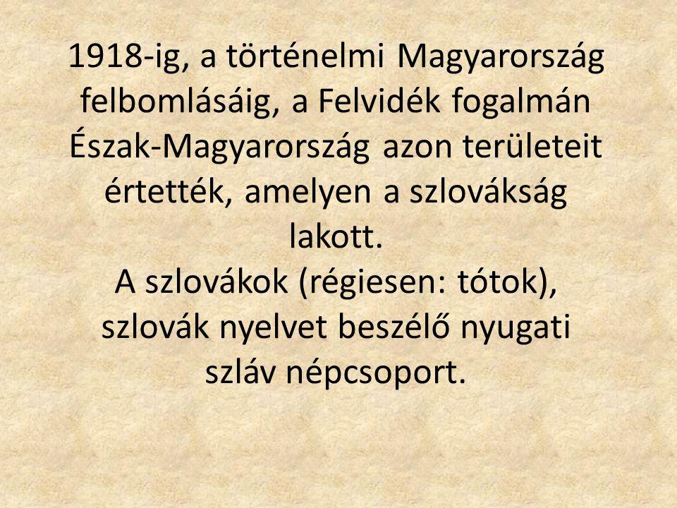 1918-ig, a történelmi Magyarország felbomlásáig, a Felvidék fogalmán Észak-Magyarország azon területeit értették, amelyen a szlovákság lakott. A szlov