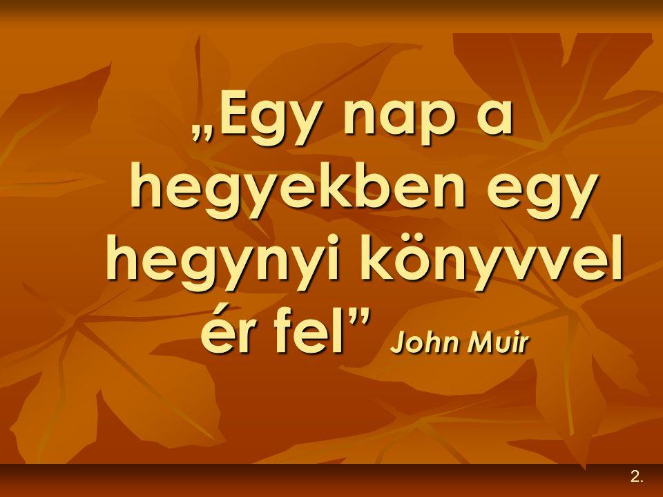 """""""Egy nap a hegyekben egy hegynyi könyvvel ér fel"""" John Muir 2."""