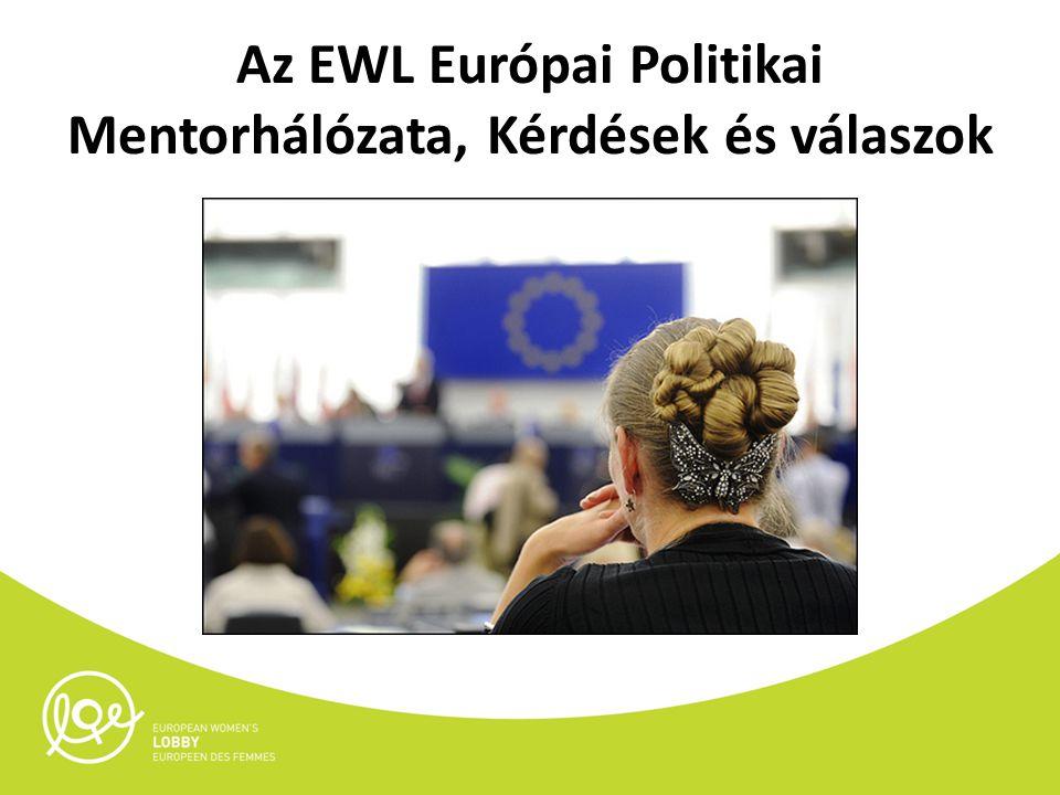 Az EWL Európai Politikai Mentorhálózata, Kérdések és válaszok