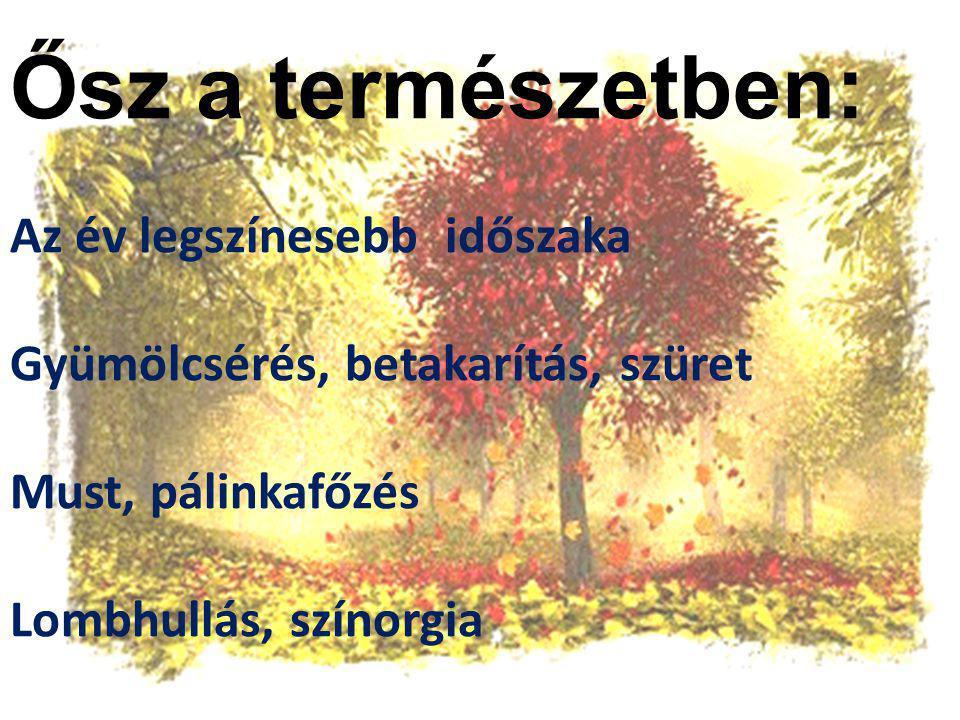 Ősz a természetben: Az év legszínesebb időszaka Gyümölcsérés, betakarítás, szüret Must, pálinkafőzés Lombhullás, színorgia