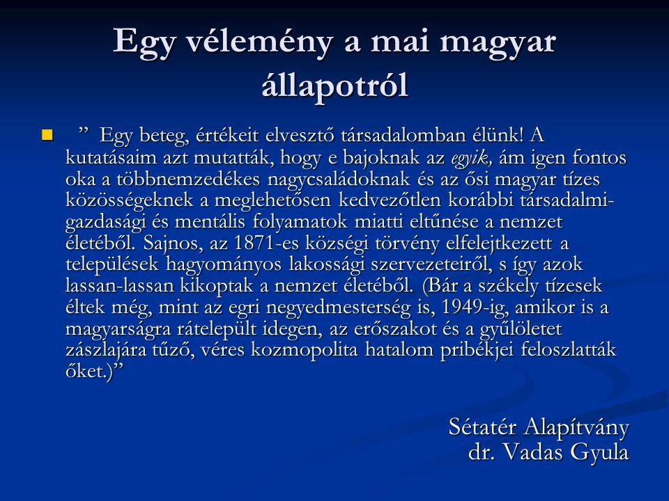 Egy vélemény a mai magyar állapotról Egy beteg, értékeit elvesztő társadalomban élünk.