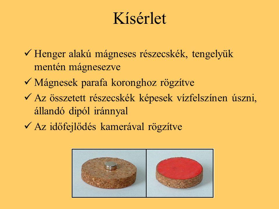 Kísérlet Henger alakú mágneses részecskék, tengelyük mentén mágnesezve Mágnesek parafa koronghoz rögzítve Az összetett részecskék képesek vízfelszínen