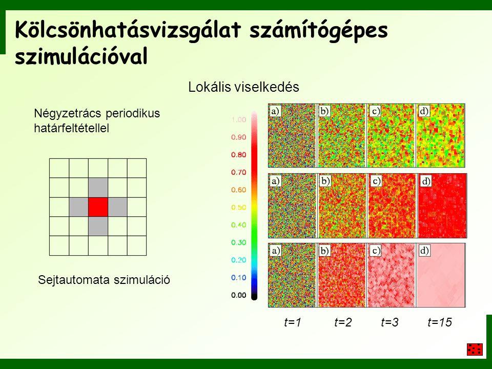 Kölcsönhatásvizsgálat számítógépes szimulációval t=1t=2t=3t=15 Lokális viselkedés Négyzetrács periodikus határfeltétellel Sejtautomata szimuláció