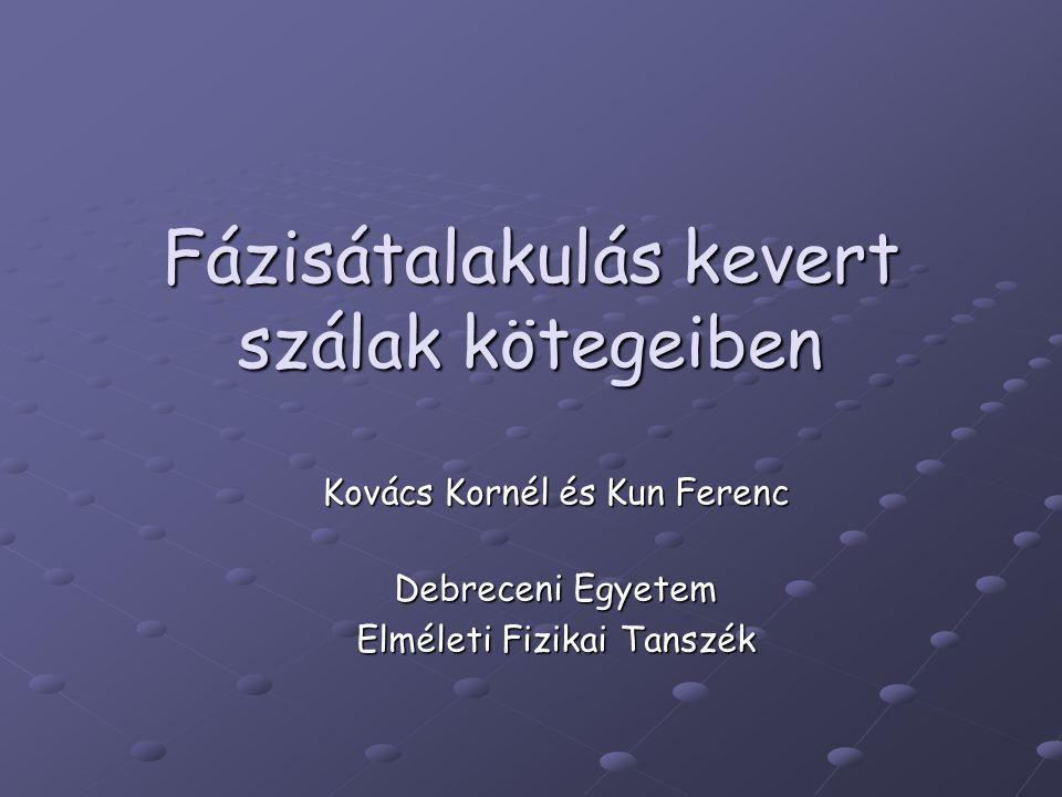 Fázisátalakulás kevert szálak kötegeiben Kovács Kornél és Kun Ferenc Debreceni Egyetem Elméleti Fizikai Tanszék