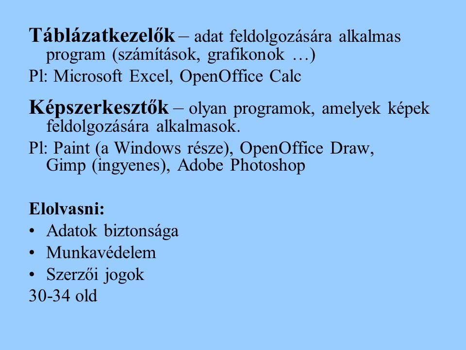 Táblázatkezelők – adat feldolgozására alkalmas program (számítások, grafikonok …) Pl: Microsoft Excel, OpenOffice Calc Képszerkesztők – olyan programo
