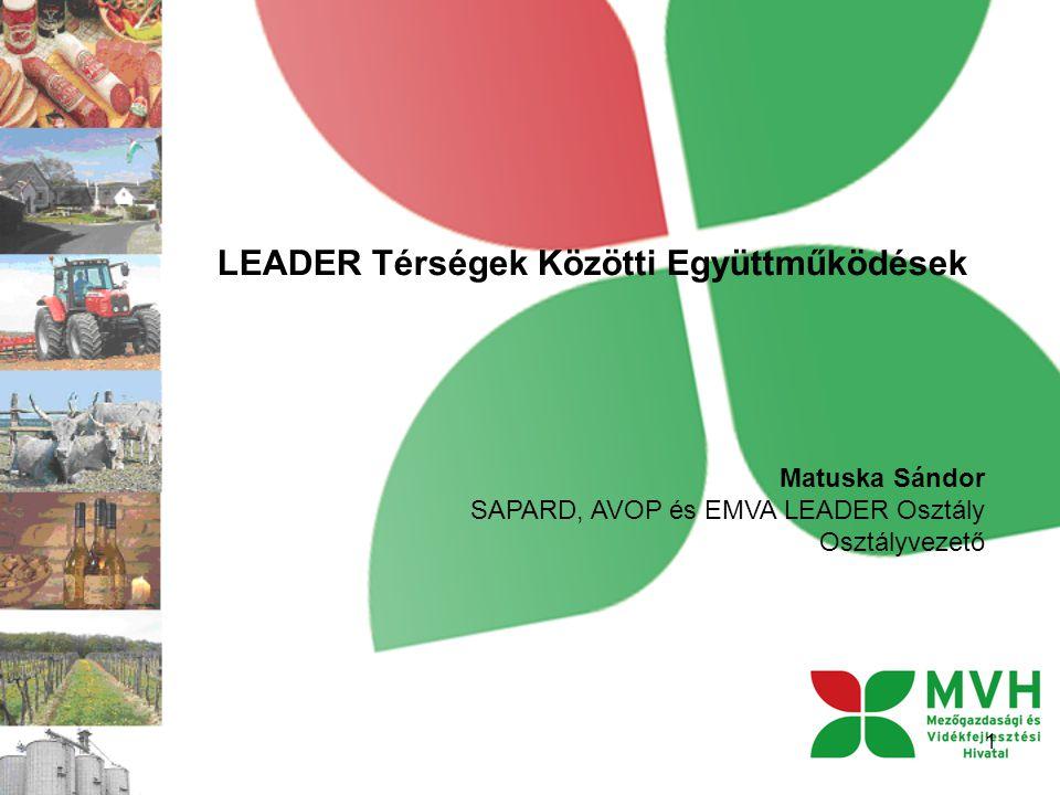LEADER Térségek Közötti Együttműködések 1 Matuska Sándor SAPARD, AVOP és EMVA LEADER Osztály Osztályvezető