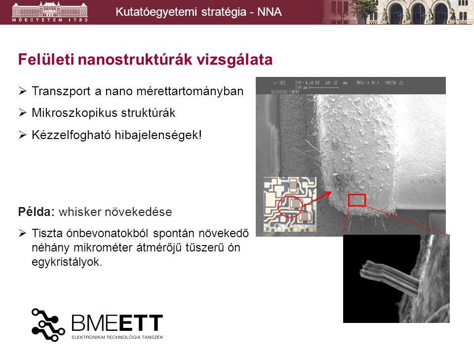 Kutatóegyetemi stratégia - NNA Felületi nanostruktúrák vizsgálata 9 TEM-XRD vizsgálatok TEM vizsgálat FIB vágat a whisker tövénél Miller indexek meghatározhatók NIMS