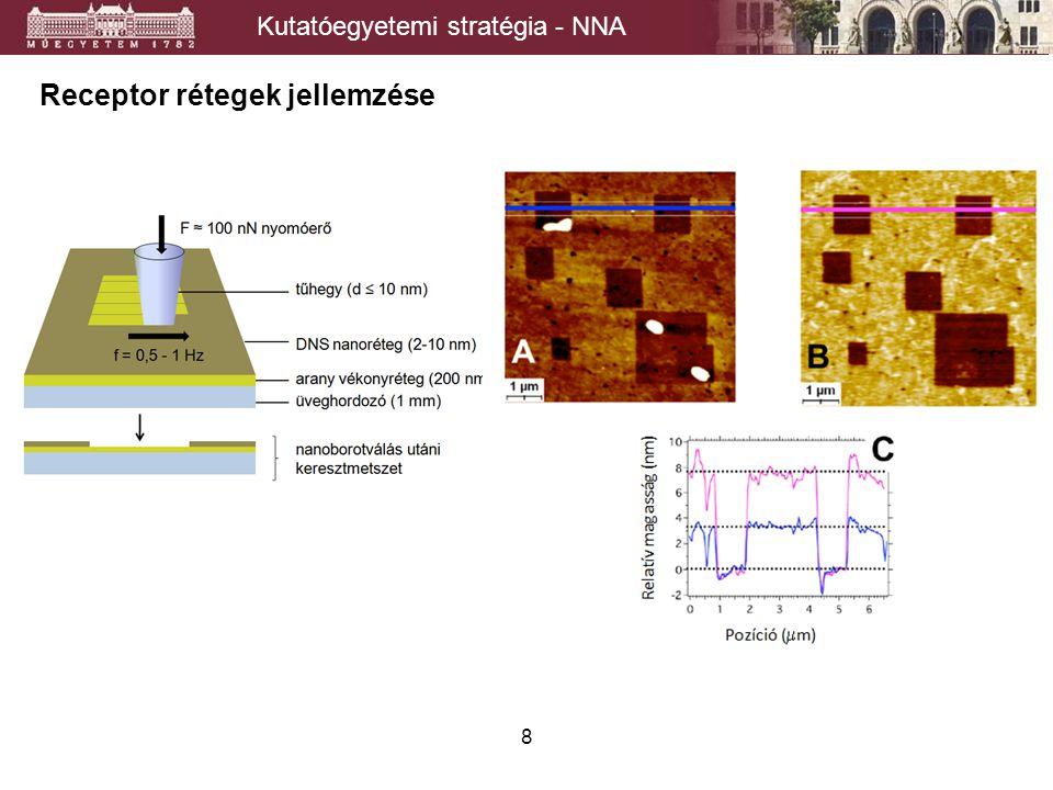 8 Receptor rétegek jellemzése Kutatóegyetemi stratégia - NNA