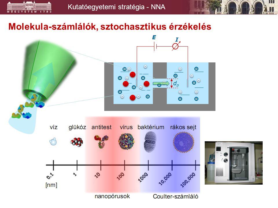 Molekula-számlálók, sztochasztikus érzékelés Kutatóegyetemi stratégia - NNA