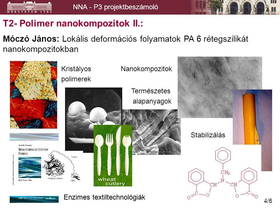 T2- Polimer nanokompozitok II.: Móczó János: Lokális deformációs folyamatok PA 6 rétegszilikát nanokompozitokban NNA - P3 projektbeszámoló Kristályos Nanokompozitok polimerek Természetes alapanyagok Enzimes textiltechnológiák Stabilizálás 4/6
