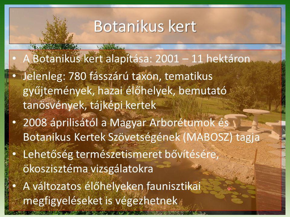 A Botanikus kert alapítása: 2001 – 11 hektáron Jelenleg: 780 fásszárú taxon, tematikus gyűjtemények, hazai élőhelyek, bemutató tanösvények, tájképi kertek 2008 áprilisától a Magyar Arborétumok és Botanikus Kertek Szövetségének (MABOSZ) tagja Lehetőség természetismeret bővítésére, ökoszisztéma vizsgálatokra A változatos élőhelyeken faunisztikai megfigyeléseket is végezhetnek