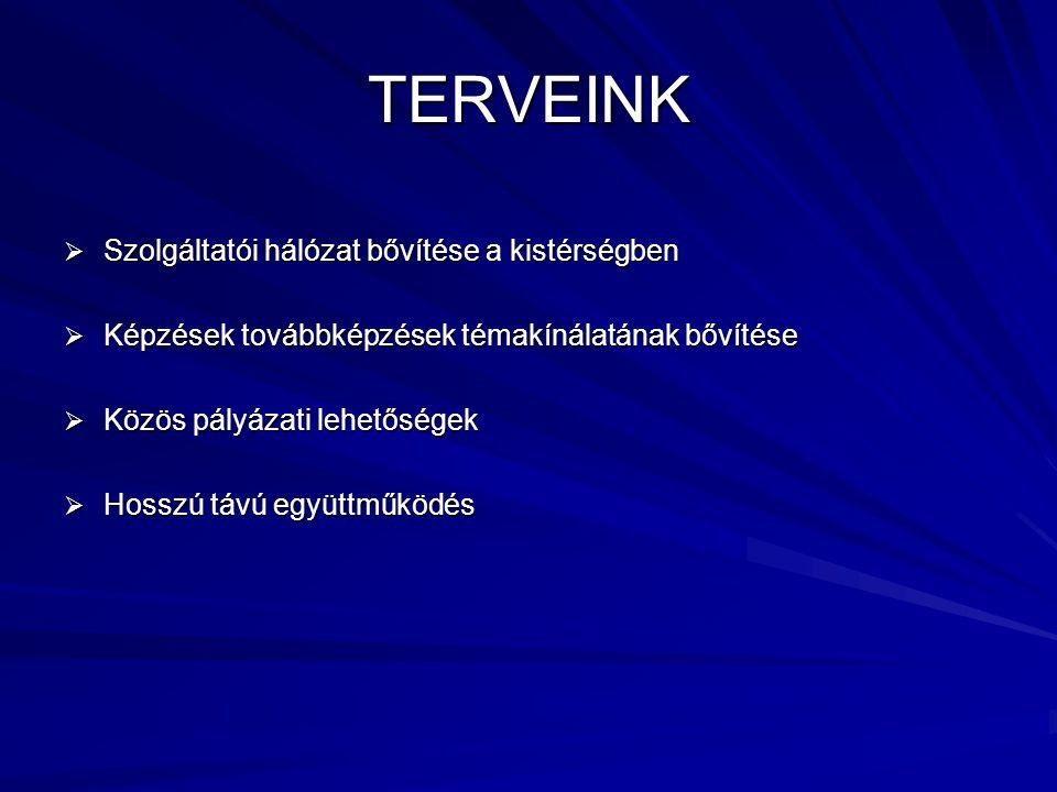 TERVEINK  Szolgáltatói hálózat bővítése a kistérségben  Képzések továbbképzések témakínálatának bővítése  Közös pályázati lehetőségek  Hosszú távú együttműködés