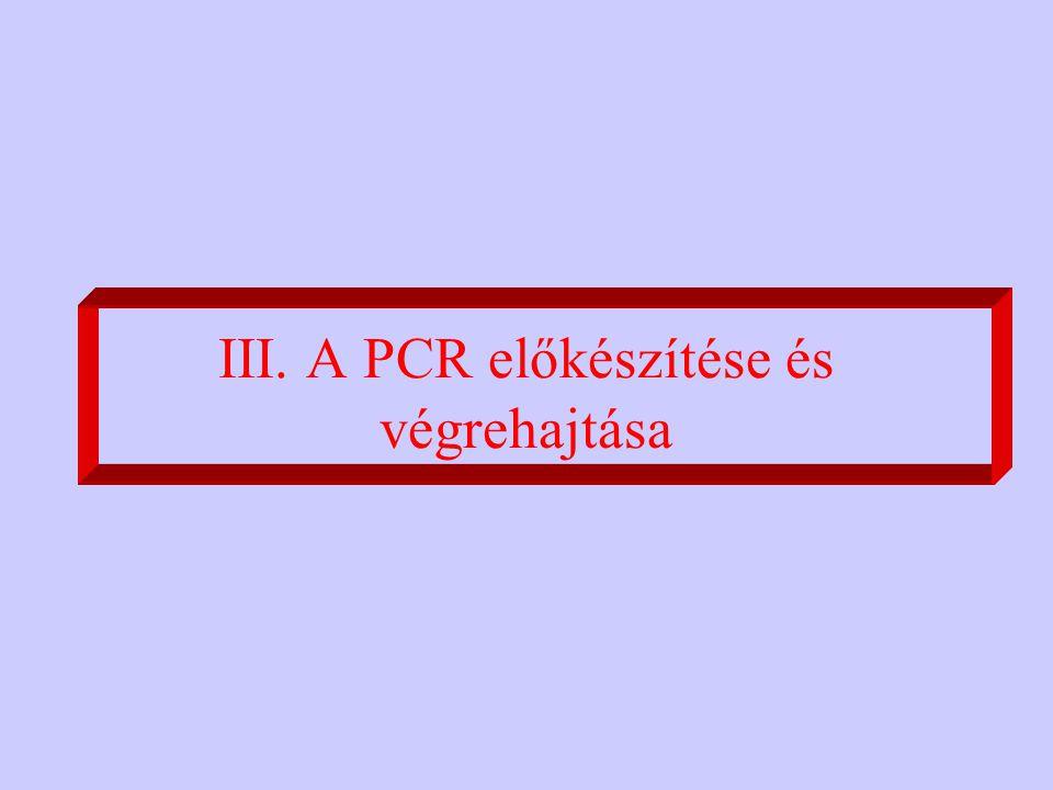 III. A PCR előkészítése és végrehajtása