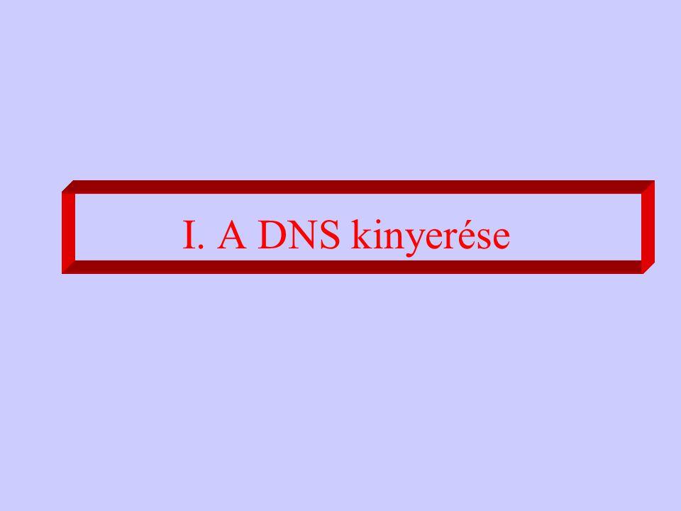 I. A DNS kinyerése