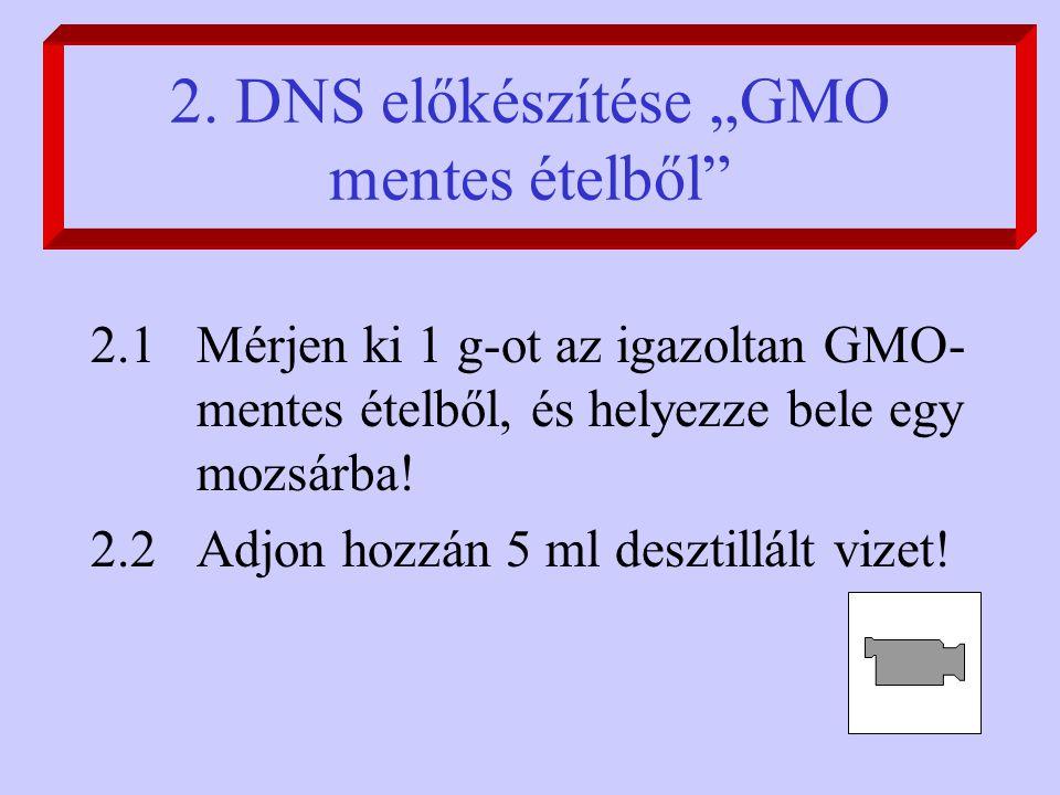 """2. DNS előkészítése """"GMO mentes ételből"""" 2.1Mérjen ki 1 g-ot az igazoltan GMO- mentes ételből, és helyezze bele egy mozsárba! 2.2Adjon hozzán 5 ml des"""