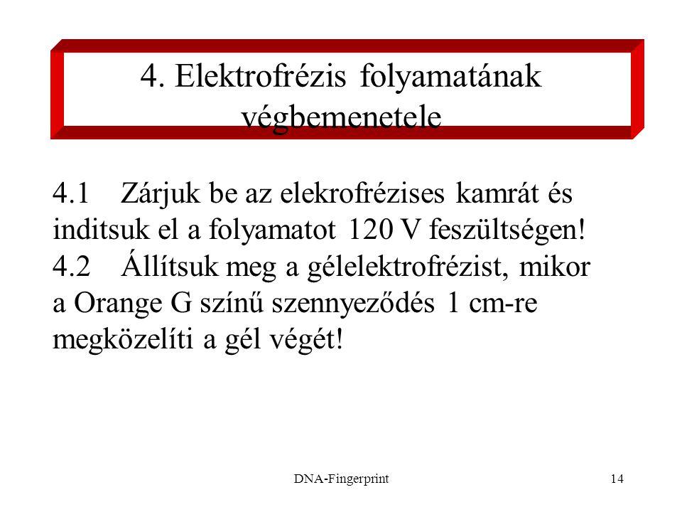 DNA-Fingerprint14 4. Elektrofrézis folyamatának végbemenetele 4.1 Zárjuk be az elekrofrézises kamrát és inditsuk el a folyamatot 120 V feszültségen! 4