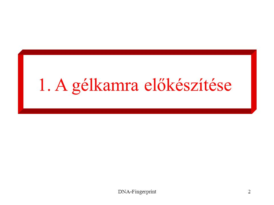 DNA-Fingerprint3 1.
