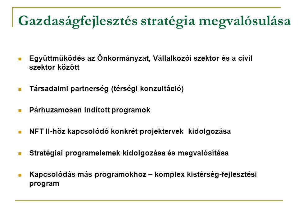 Gazdaságfejlesztés stratégia megvalósulása Együttműködés az Önkormányzat, Vállalkozói szektor és a civil szektor között Társadalmi partnerség (térségi konzultáció) Párhuzamosan indított programok NFT II-höz kapcsolódó konkrét projektervek kidolgozása Stratégiai programelemek kidolgozása és megvalósítása Kapcsolódás más programokhoz – komplex kistérség-fejlesztési program