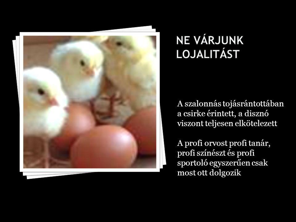 A szalonnás tojásrántottában a csirke érintett, a disznó viszont teljesen elkötelezett A profi orvost profi tanár, profi színészt és profi sportoló egyszerűen csak most ott dolgozik