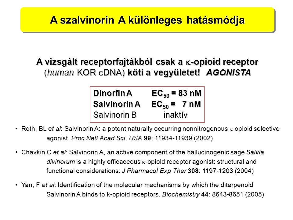 A szalvinorin A különleges hatásmódja Roth, BL et al: Salvinorin A: a potent naturally occurring nonnitrogenous  opioid selective Roth, BL et al: Salvinorin A: a potent naturally occurring nonnitrogenous  opioid selective agonist.