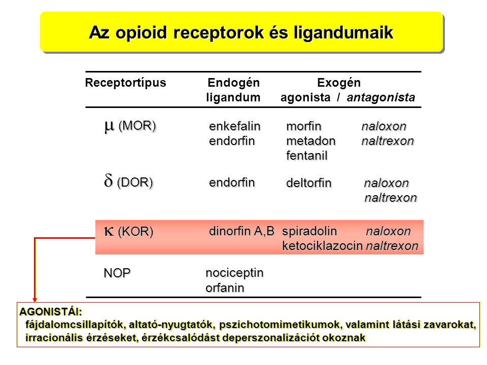 Az opioid receptorok és ligandumaik Receptortípus Endogén Exogén ligandum agonista / antagonista  (MOR)  (KOR)  (DOR) enkefalin enkefalin endorfin
