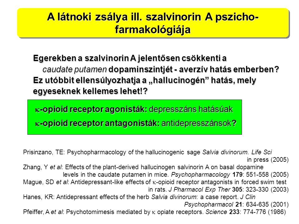 A látnoki zsálya ill. szalvinorin A pszicho- farmakológiája Prisinzano, TE: Psychopharmacology of the hallucinogenic sage Salvia divinorum. Life Sci i