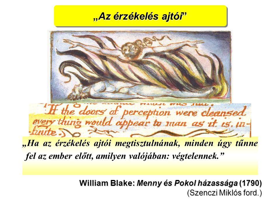"""""""Az érzékelés ajtói """"Ha az érzékelés ajtói megtisztulnának, minden úgy tűnne fel az ember előtt, amilyen valójában: végtelennek. William Blake : Menny és Pokol házassága (1790) (Szenczi Miklós ford.)"""