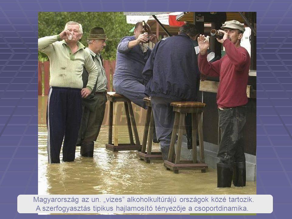 """Magyarország az un. """"vizes"""" alkoholkultúrájú országok közé tartozik. A szerfogyasztás tipikus hajlamosító tényezője a csoportdinamika."""