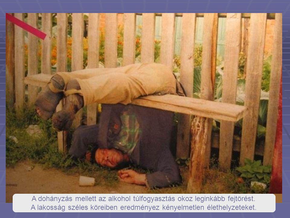 """Magyarország az un.""""vizes alkoholkultúrájú országok közé tartozik."""
