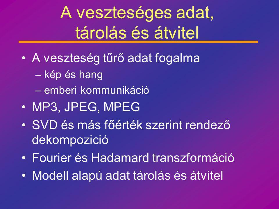 A veszteséges adat, tárolás és átvitel A veszteség tűrő adat fogalma –kép és hang –emberi kommunikáció MP3, JPEG, MPEG SVD és más főérték szerint rendező dekompozició Fourier és Hadamard transzformáció Modell alapú adat tárolás és átvitel