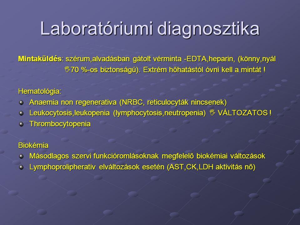 Laboratóriumi diagnosztika Mintaküldés: szérum,alvadásban gátolt vérminta -EDTA,heparin, (könny,nyál  70 %-os biztonságú). Extrém hőhatástól óvni kel