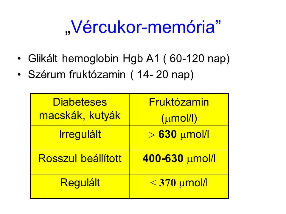 """""""Vércukor-memória Glikált hemoglobin Hgb A1 ( 60-120 nap) Szérum fruktózamin ( 14- 20 nap) Diabeteses macskák, kutyák Fruktózamin (  mol/l) Irregulált  630  mol/l Rosszul beállított 400-630  mol/l Regulált < 370  mol/l"""