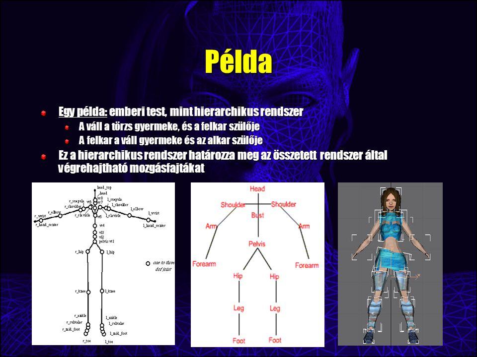 Példa Egy példa: emberi test, mint hierarchikus rendszer A váll a törzs gyermeke, és a felkar szülője A felkar a váll gyermeke és az alkar szülője Ez a hierarchikus rendszer határozza meg az összetett rendszer által végrehajtható mozgásfajtákat