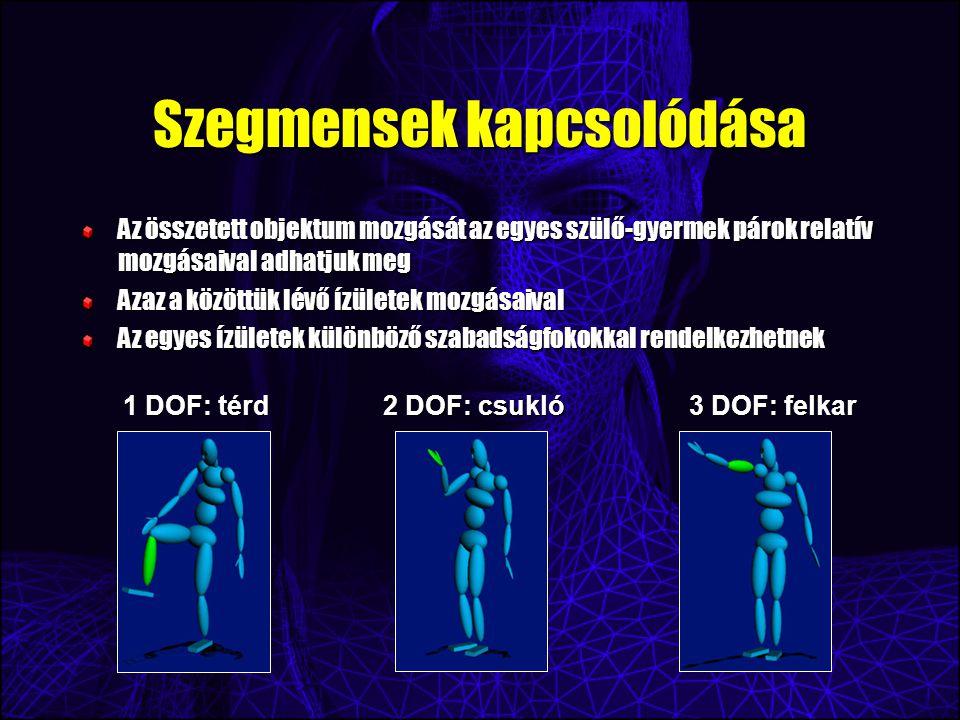 Szegmensek kapcsolódása Az összetett objektum mozgását az egyes szülő-gyermek párok relatív mozgásaival adhatjuk meg Azaz a közöttük lévő ízületek mozgásaival Az egyes ízületek különböző szabadságfokokkal rendelkezhetnek 1 DOF: térd 2 DOF: csukló 3 DOF: felkar