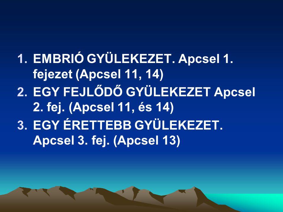 1.EMBRIÓ GYÜLEKEZET. Apcsel 1. fejezet (Apcsel 11, 14) 2.EGY FEJLŐDŐ GYÜLEKEZET Apcsel 2. fej. (Apcsel 11, és 14) 3.EGY ÉRETTEBB GYÜLEKEZET. Apcsel 3.