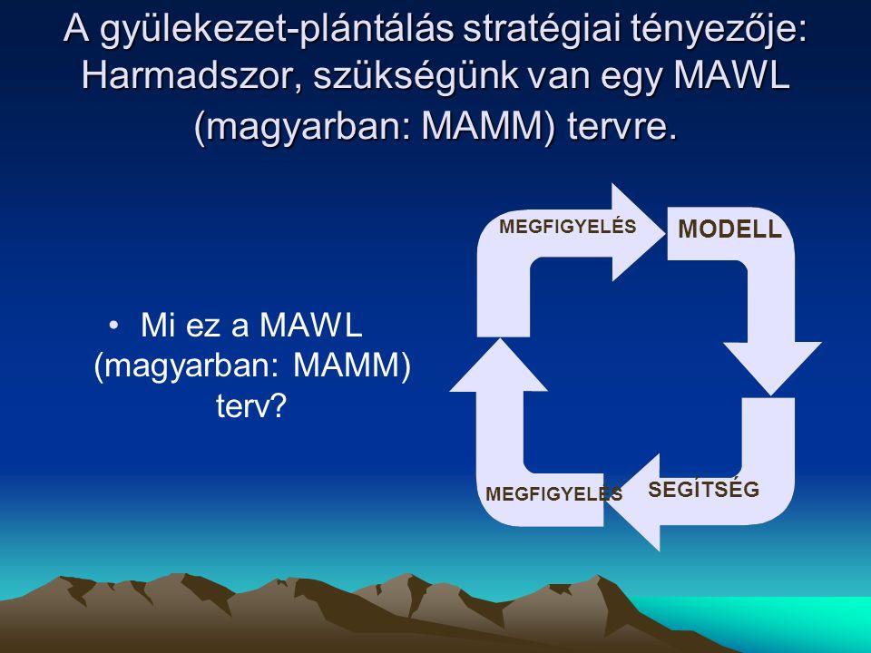A gyülekezet-plántálás stratégiai tényezője: Harmadszor, szükségünk van egy MAWL (magyarban: MAMM) tervre. Mi ez a MAWL (magyarban: MAMM) terv? MODELL