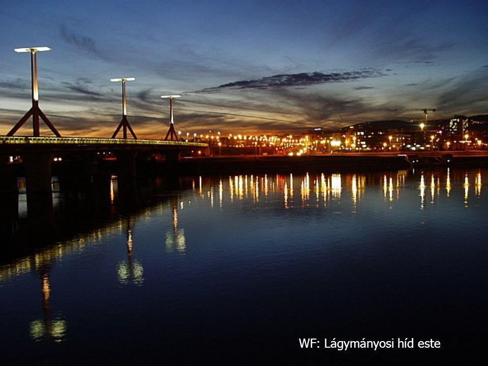 WF: Lágymányosi híd este