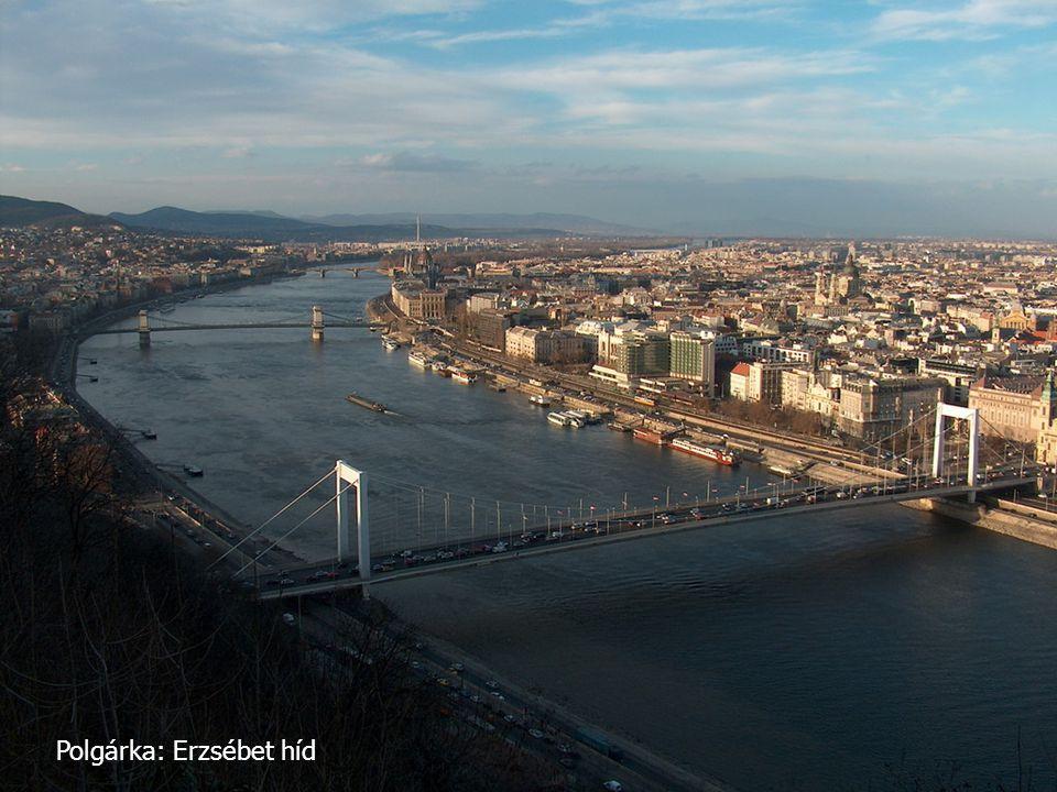 Polgárka: Erzsébet híd
