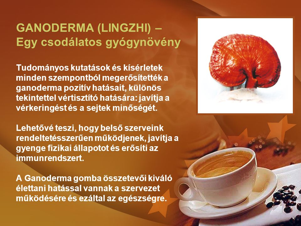 GANODERMA (LINGZHI) – Egy csodálatos gyógynövény Tudományos kutatások és kísérletek minden szempontból megerősítették a ganoderma pozitív hatásait, kü